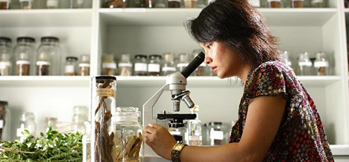 A researcher looking through a microscope